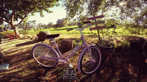 bicicleta decoracion