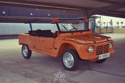 alquiler-coches-4